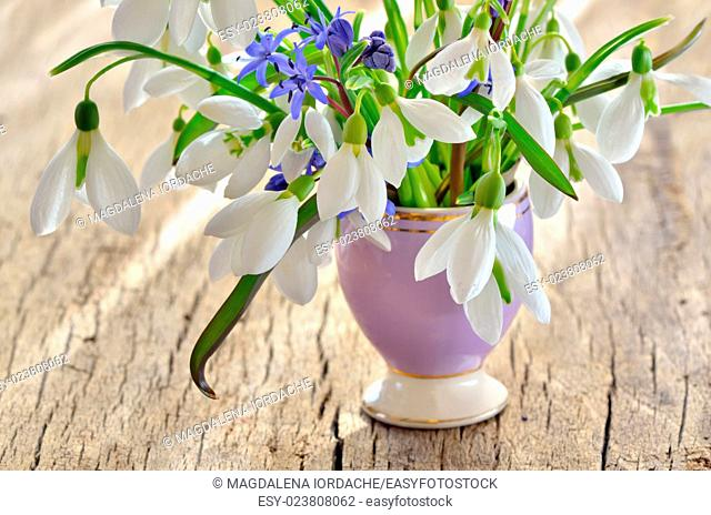 Bunch of Crocus and Snowdrops in a glass vase on old wooden table