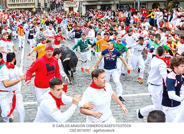 PAMPLONA, SPAIN - JULY 11, 2017: Bulls and people running on the street, encierro, during the festival of San Fermin. Bulls of the cattle ranch of Jandilla in...
