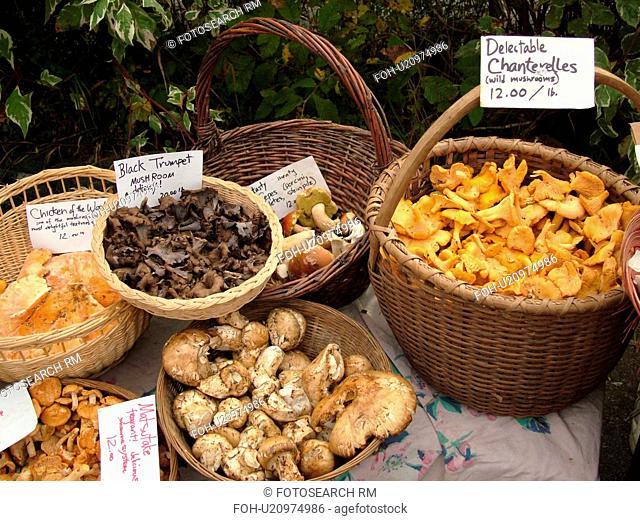Montpelier, VT, Vermont, Farmer's Market, Mushrooms