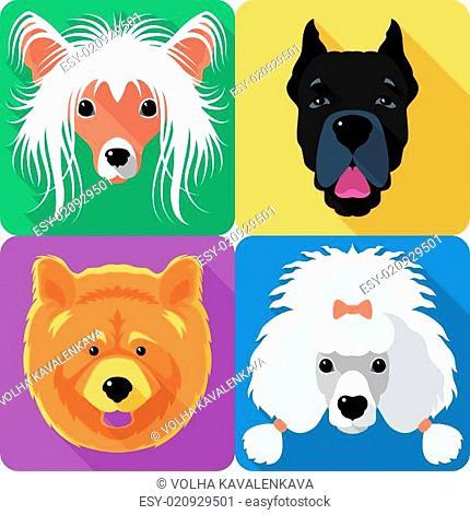 Set dog head icon flat design
