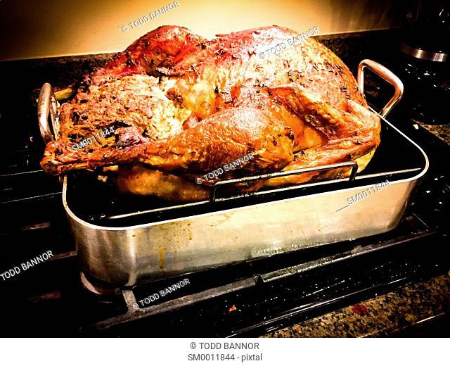 Thanksgiving roast turkey fresh from oven