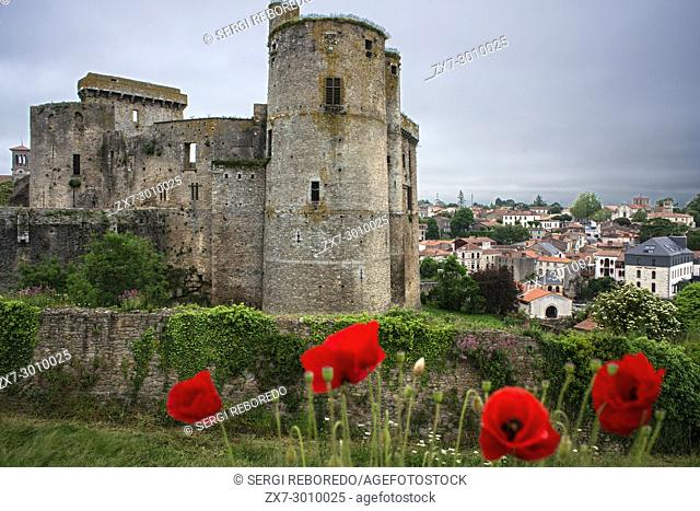 Clisson village with the castle in the Sevre Nantaise river, Nantes, Loire Atlantique, France