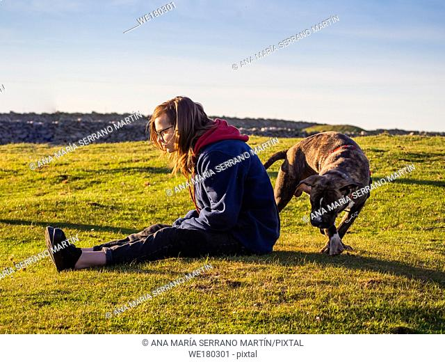 An teenager woman playing with a young dog of the American staffordshire breed in countryside in springtime