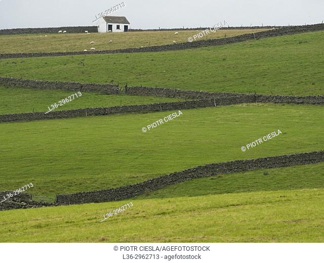 Great Britain. Cumbria. Landscape