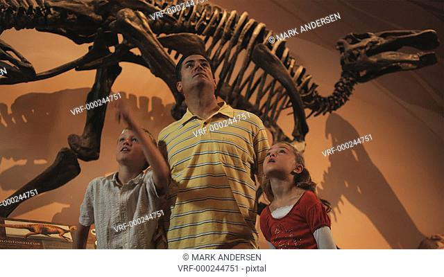MS Man with daughter (8-9) and son (10-11) in natural history museum, Lehi, Utah, USA