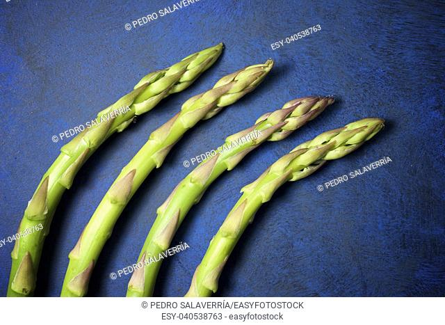 Close-up of a wild asparagus on a blue background