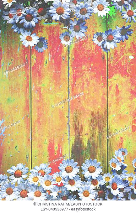 Yellow red colorful vintage background with daisy flowers in shabby distressed grungy texture hippie style