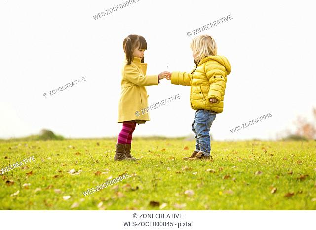 Caucasian boy and vietnamese girl, giving a flower