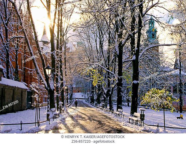 Poland, Krakow, Wawel Royal Castle from Planty, winter