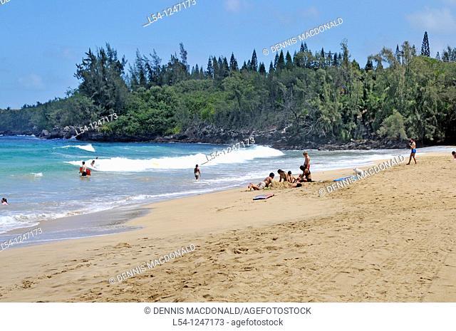 D T Fleming Beach Park Maui Hawaii Pacific Ocean