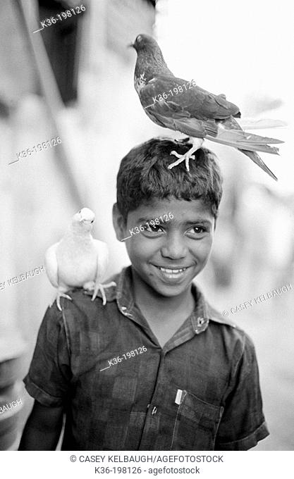 Boy with birds. India
