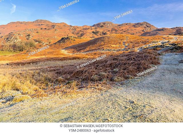 View towards Loughrigg Fell, Elterwater, Lake District National Park, Cumbria, England, United Kingdom, Europe