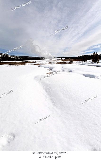 Old Faithful Geyser, Yellowstone NP, WY