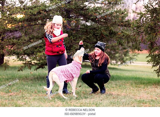 Girl and her sister playing with dog in garden