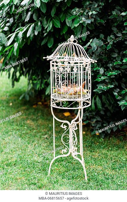 Easter nest in bird cage, Still life Easter