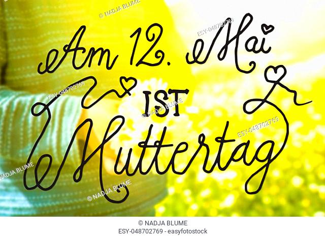 German Calligraphy Muttertag Means Happy Mothers Day. Cute Little Kid Is Holding A Bouquet Of Daisy Flower. Sunny And Spring Flower Field