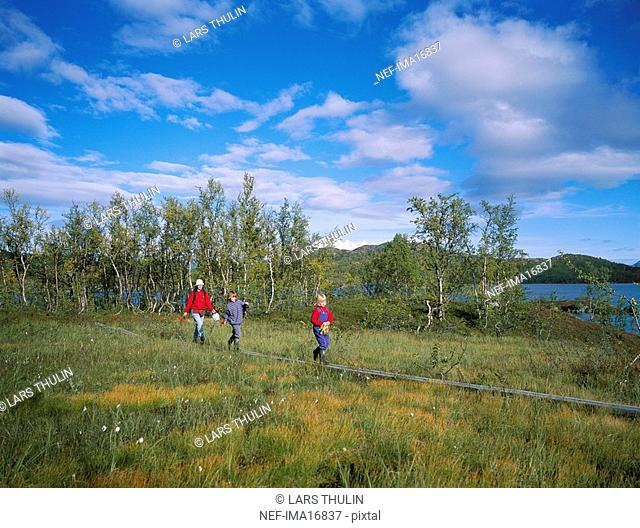 Three people hiking in the mountains