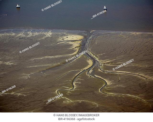 Tidal creeks at low tide on Halbkalbsand island in the river Elbe, near Wedel and Jork, Lower Saxony, Germany