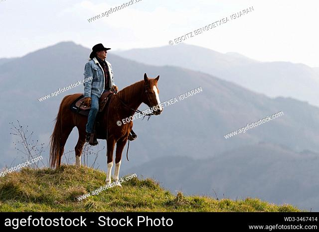 A veteran cowboy on his arabian horse with a wild landscape in the background