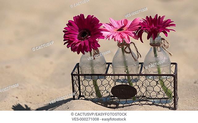 Flowers in glass bottle in metallic basket on sand