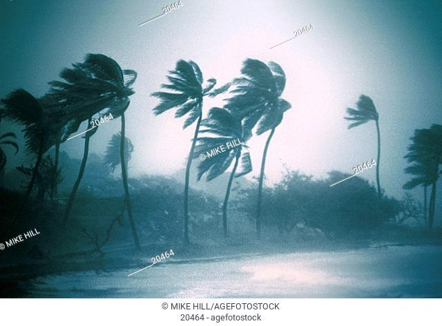 Hurricane Luis (september 1995). North Eastern Antigua Island, Caribbean