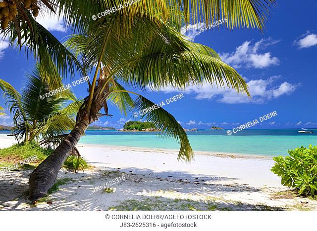 Tropical Beach, Praslin Island, Seychelles, Indian Ocean, Africa