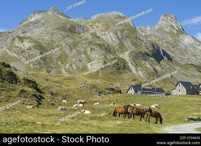 Ossau valley National park of the Pyrenees France