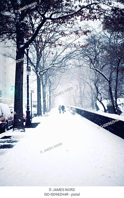 People walking in snow on street