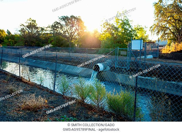 A large pipe pours storm runoff into the Contra Costa Canal Trail in Walnut Creek, California, October 19, 2016