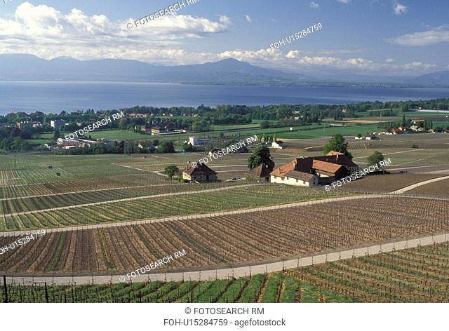 Switzerland, La Cote, Rolle, Lake Geneva, Vaud, Europe, Scenic view of the countryside covered with vineyards and the village of Rolle in the spring along Lac...