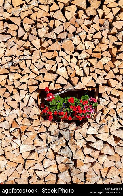 Woodpile with geraniums, Garmisch, Garmisch-Partenkirchen, Upper Bavaria, Bavaria, southern Germany, Germany, Europe