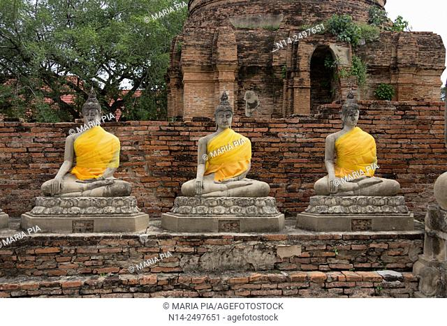 Ayutthaya Phra Nakhon Si Ayutthaya ancient capital city in Thailand, north of Bangkok. Ruins of Buddhist temples and statues of Buddha decorated with yellow...