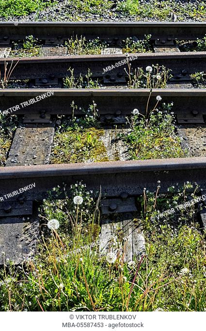 Natural Science, On the old abandoned railway