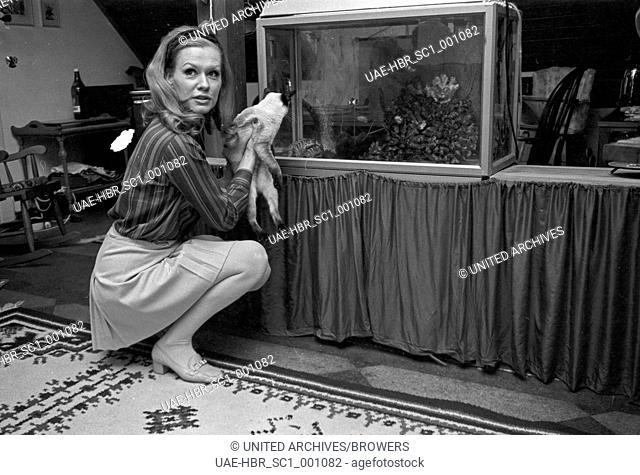 Die deutsche Schauspielerin und Synchronsprecherin Ingrid van Bergen, Deutschland 1960er Jahre. German actress and dubbing actress Ingrid van Bergen