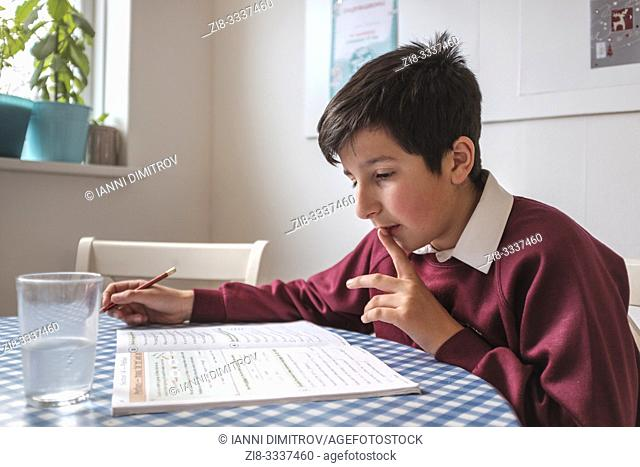 UK, Surrey- primary schoolboy studying at home