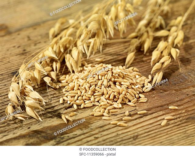 Oat seeds and ears of oats on a wooden surface