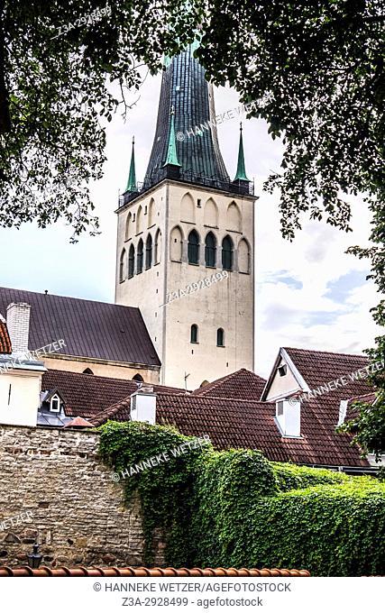 View on St. Olaf's church in Tallinn, Estonia, Europe