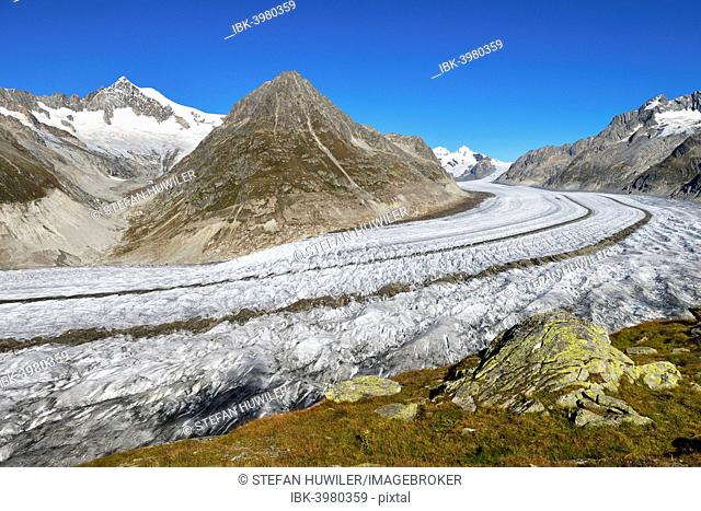 Great Aletsch Glacier, Mt Olmenhorn at the front, Mt Aletschhorn at the back, Canton of Valais, Goms, Switzerland