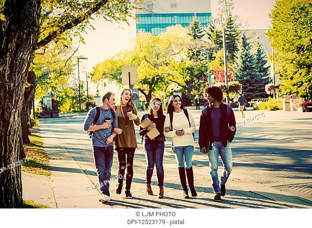 An ethnically diverse group of university students walk and talk together on the campus in autumn; Edmonton, Alberta, Canada