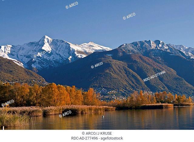 Lago Maggiore, Ascona, district Locarno, Ticino, Switzerland