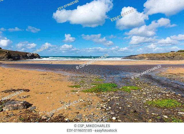 Green seaweed Treyarnon Bay Cornwal