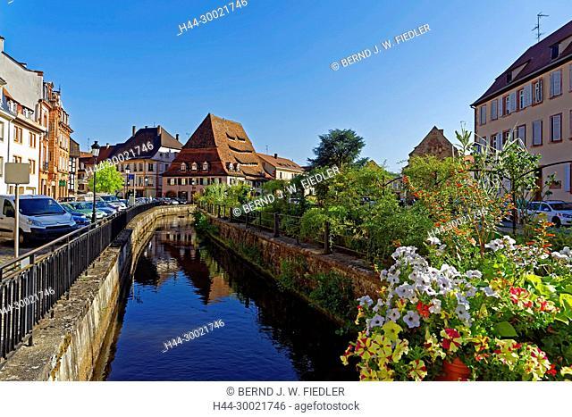 Fluß, Lauter, Häuserzeile, historisch, Parkanlage