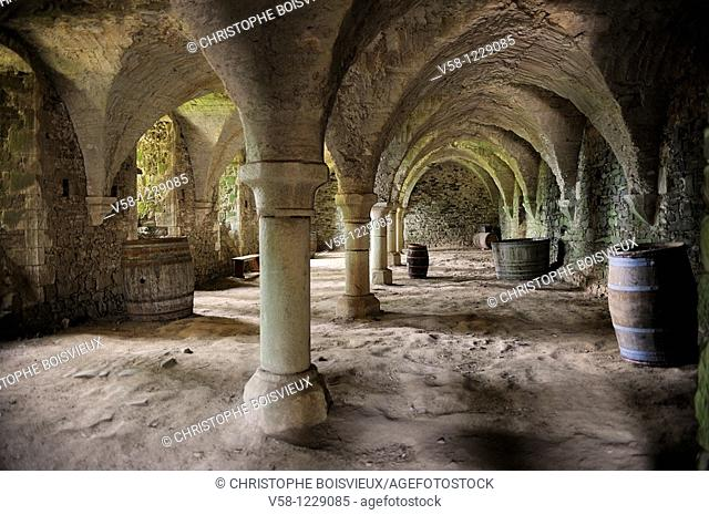 France, Cotes d'Armor, Abbey of Beauport, The cellars