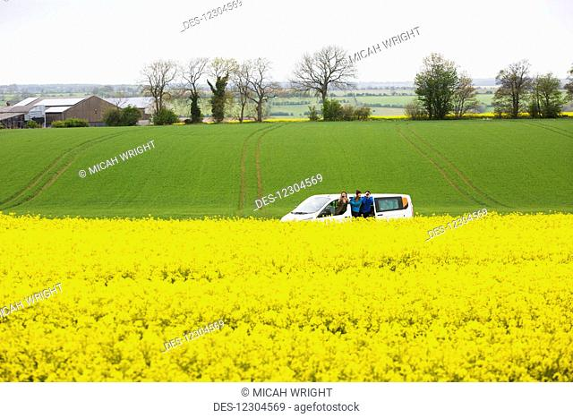 A drive through the English countryside which is covered in vibrant yellow Rapeseed flowers; Cotswolds, England