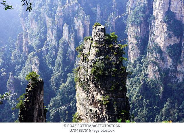 Beautiful rock formations at Zhangjiajie national park in Hunan, China
