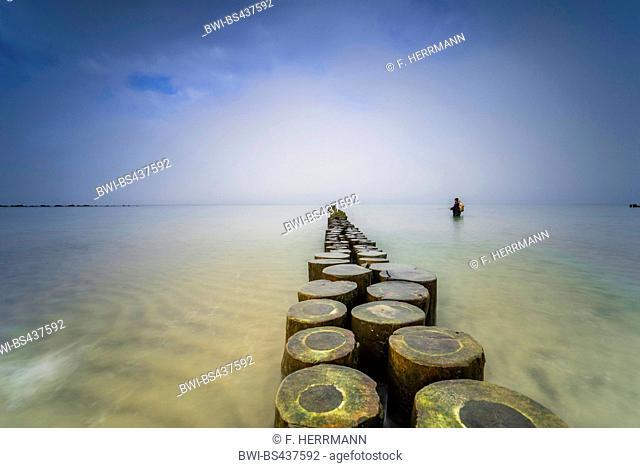 spur dike in the Baltic Sea, Germany, Mecklenburg-Western Pomerania, Darss, Prerow