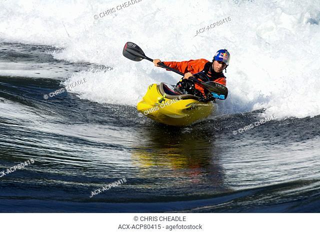 Whitewater kayakers on flood tide at Skookumchuck Narrows, Sechelt Inlet, Sunshine Coast, British Columbia, Canada