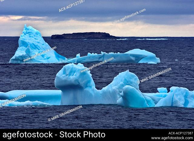 Icebergs at dusk on Bonavista Peninsula, Atlantic Ocean, Bonavista, Newfoundland & Labrador, Canada