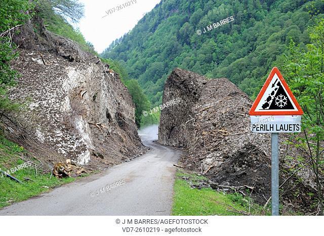 Snow avalanche in Artiga de Lin. Val d'Aran, Lleida, Catalonia, Spain. Traffic signal is in aranes occitan lenguage