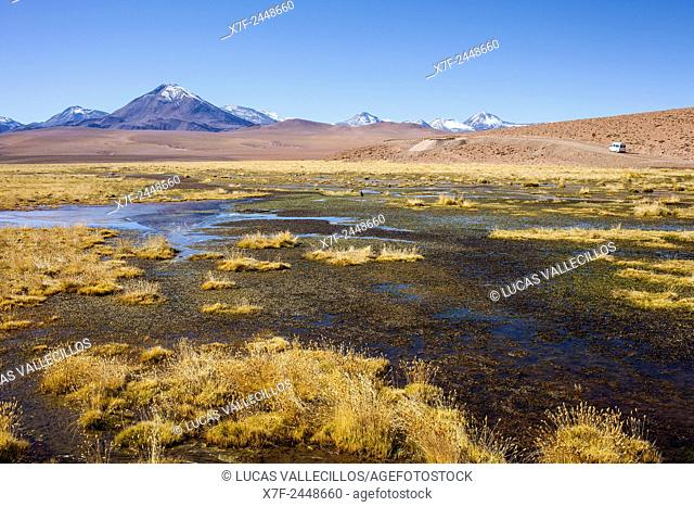 Altiplano, Vado Putana, near El Tatio geysers, in background Andes Mountains, Atacama desert. Region de Antofagasta. Chile